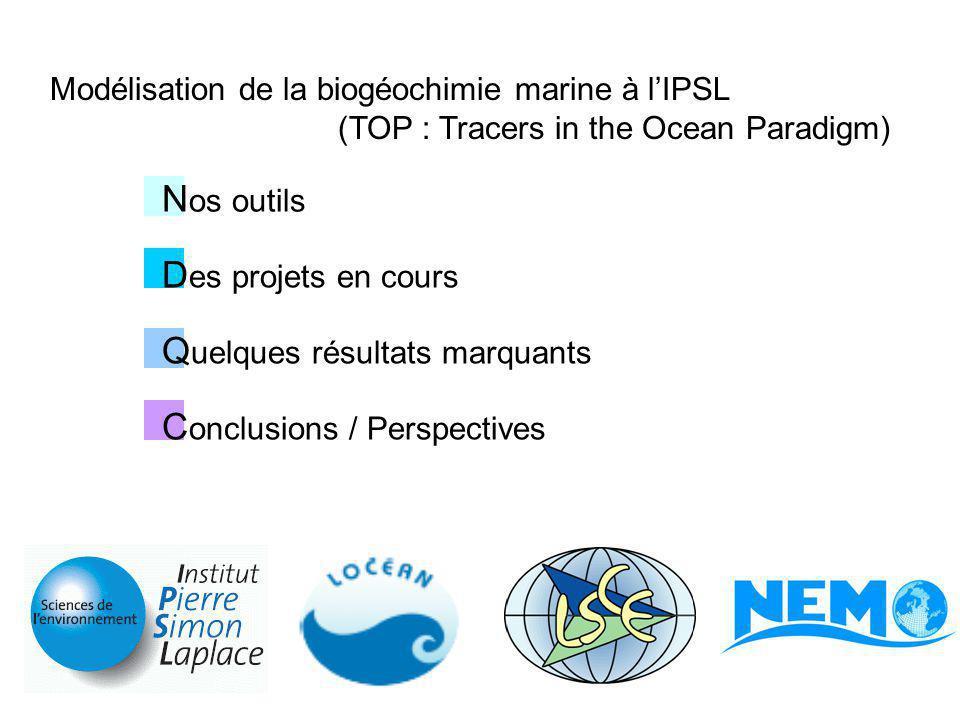 N os outils Organisation : Groupe BIOMAR (équipes de recherche LOCEAN / LSCE) Réunions Scientifiques (2x / mois) Groupe NEMO-TOP (autour des outils biogéochimie marine) Réunions Développement (2x / an) en lien avec Equipe Système NEMO