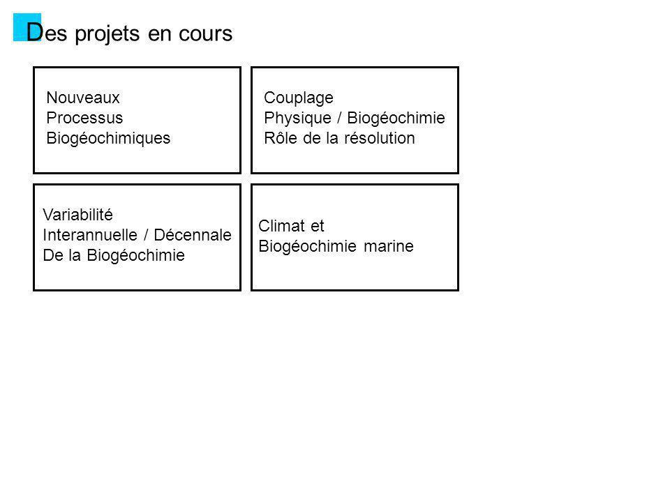 D es projets en cours Nouveaux Processus Biogéochimiques - Amélioration / complexification de certains cycles : cycle du fer, cycle des carbonates (acidification), … - Introduction dautres espèces « climatiques » : DMS, N 2 O, … - Vers les niveaux trophiques supérieurs : jusquà des modèles de grands prédateurs (thons, …) - Incorporation de « traceurs » océaniques (pour la paléoclim) : 13 C, Pa/Th, Nd, … - Assimilation de données pour contraindre les paramètres des modèles [plusieurs projets LEFE, ANR, FP7, …]
