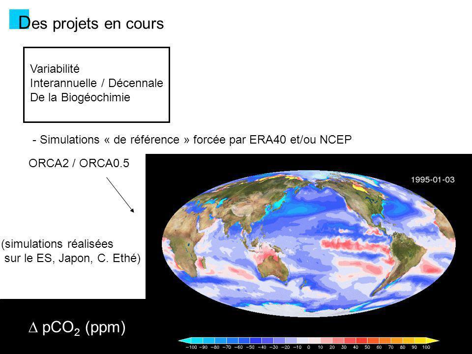 D es projets en cours Variabilité Interannuelle / Décennale De la Biogéochimie - Simulations « de référence » forcée par ERA40 et/ou NCEP ORCA2 / ORCA0.5 - Projet MERCATOR-Vert (PI.