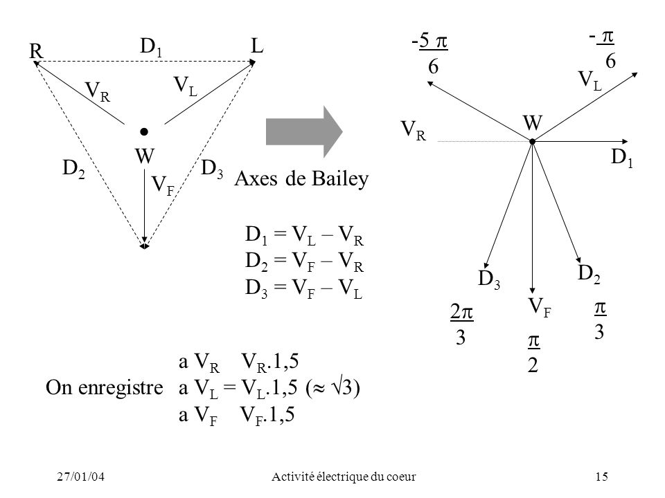 27/01/04Activité électrique du coeur15 D 1 = V L – V R D 2 = V F – V R D 3 = V F – V L a V R V R.1,5 On enregistrea V L = V L.1,5 ( 3) a V F V F.1,5 W