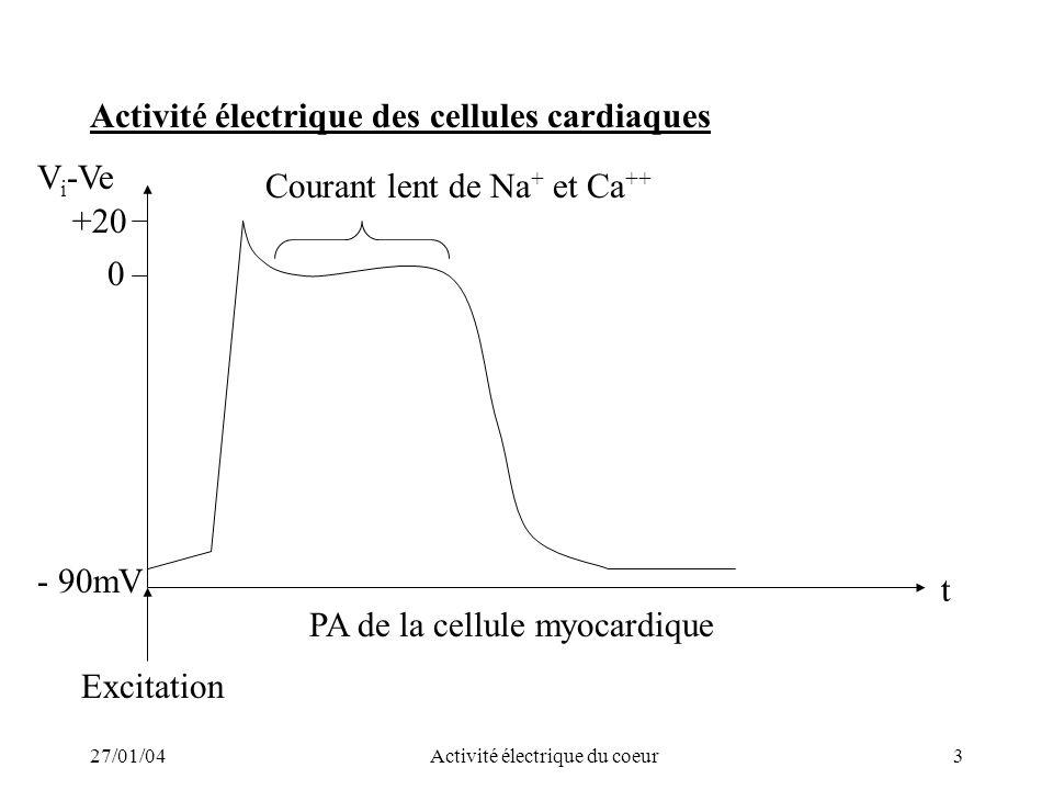 27/01/04Activité électrique du coeur3 Activité électrique des cellules cardiaques t PA de la cellule myocardique - 90mV +20 0 V i -Ve Courant lent de