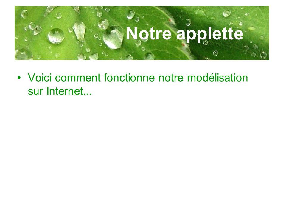 Notre applette Voici comment fonctionne notre modélisation sur Internet...