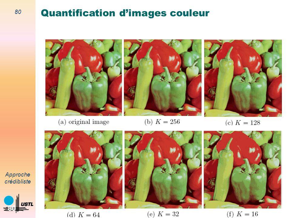 79 Approche crédibliste 79 Segmentation couleur Principe Convolution de limage I par un filtre Tenir compte du voisinage du pixel P Pixels P i de coul