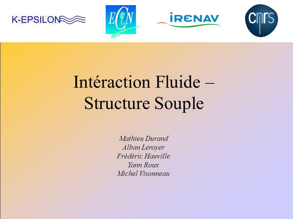 Intéraction Fluide – Structure Souple Mathieu Durand Alban Leroyer Frédéric Hauville Yann Roux Michel Visonneau