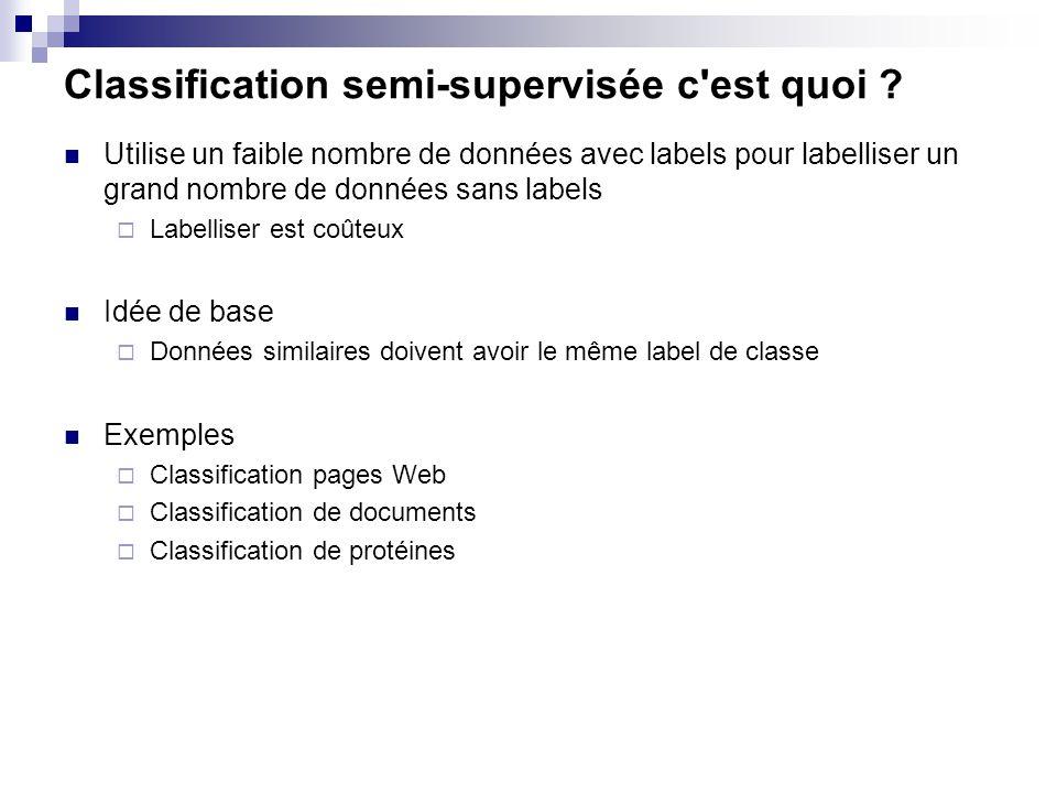 Classification semi-supervisée c'est quoi ? Utilise un faible nombre de données avec labels pour labelliser un grand nombre de données sans labels Lab