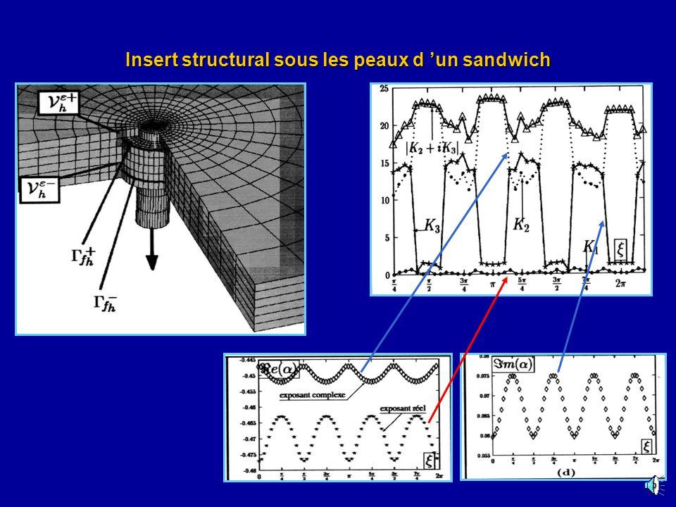 Insert structural sous les peaux d un sandwich