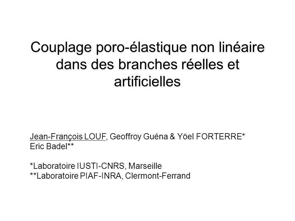 Couplage poro-élastique non linéaire dans des branches réelles et artificielles Jean-François LOUF, Geoffroy Guéna & Yöel FORTERRE* Eric Badel** *Labo