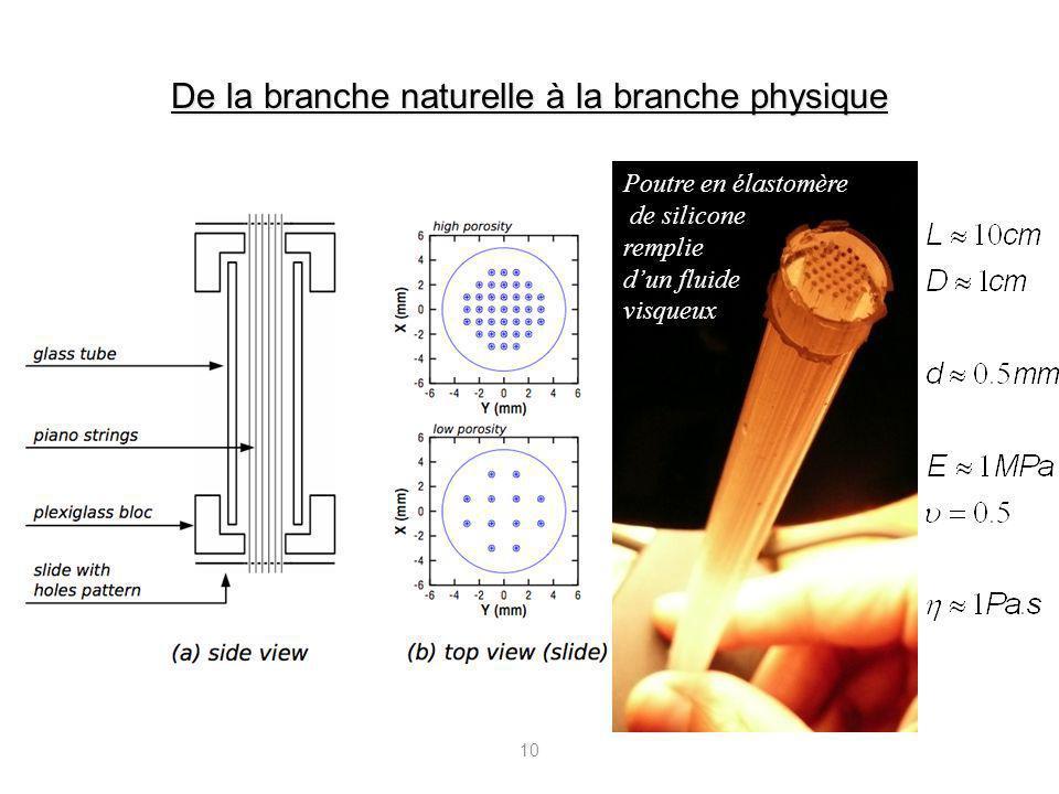 10 De la branche naturelle à la branche physique Poutre en élastomère de silicone remplie dun fluide visqueux