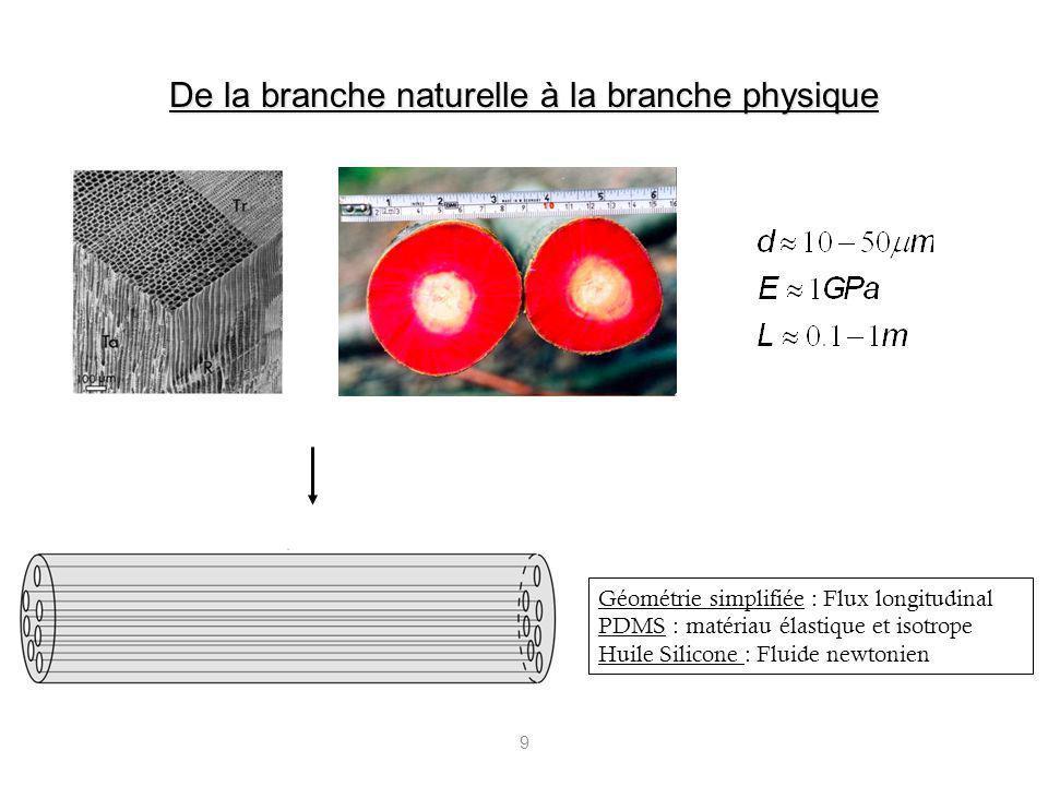 9 De la branche naturelle à la branche physique Géométrie simplifiée : Flux longitudinal PDMS : matériau élastique et isotrope Huile Silicone : Fluide