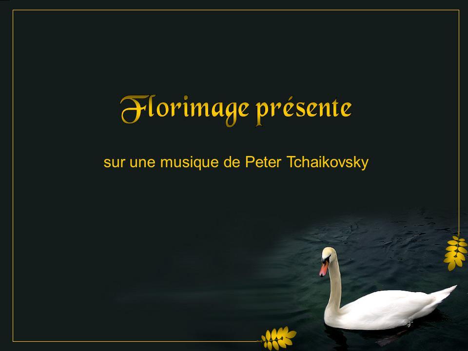 sur une musique de Peter Tchaikovsky