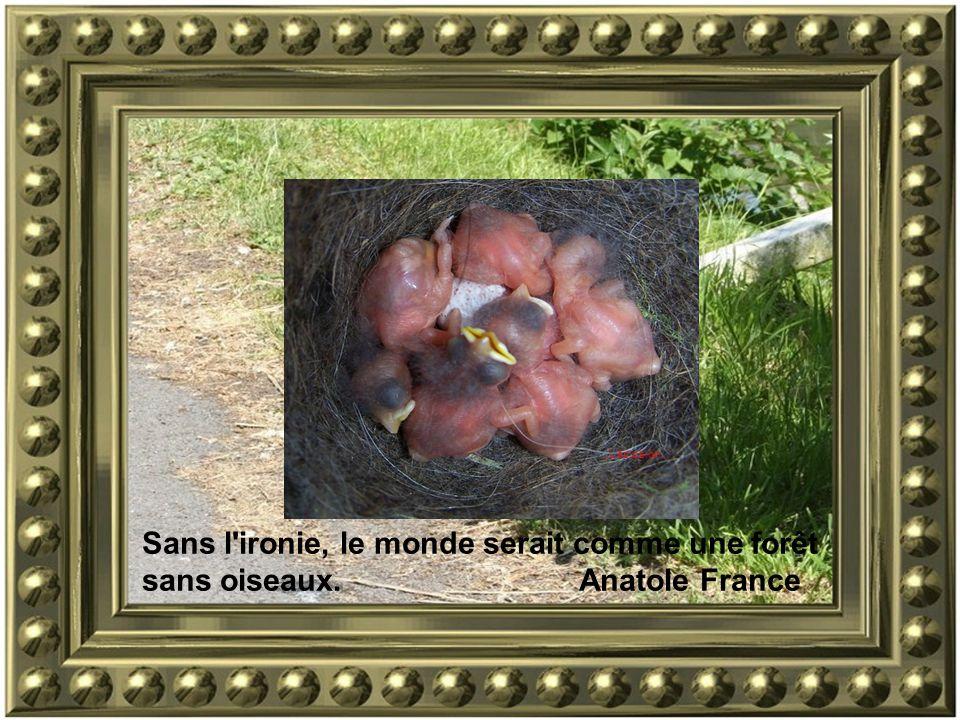Sans l ironie, le monde serait comme une forêt sans oiseaux. Anatole France..Léclosion…