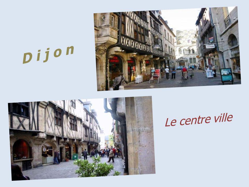 Dijon dortoir des moines, dans lancienne Abbaye Bénédictine Saint-Bénigne