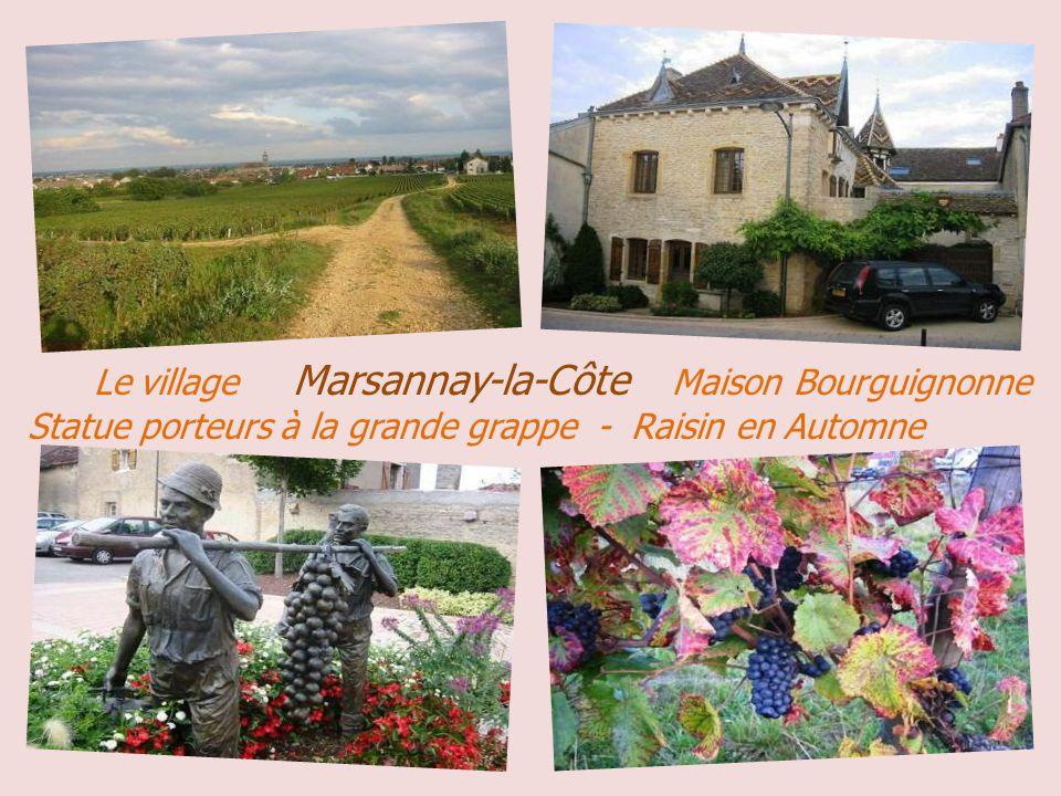 Perrigny – lès – Dijon vers 1900 La place Saint-André La Grande Rue