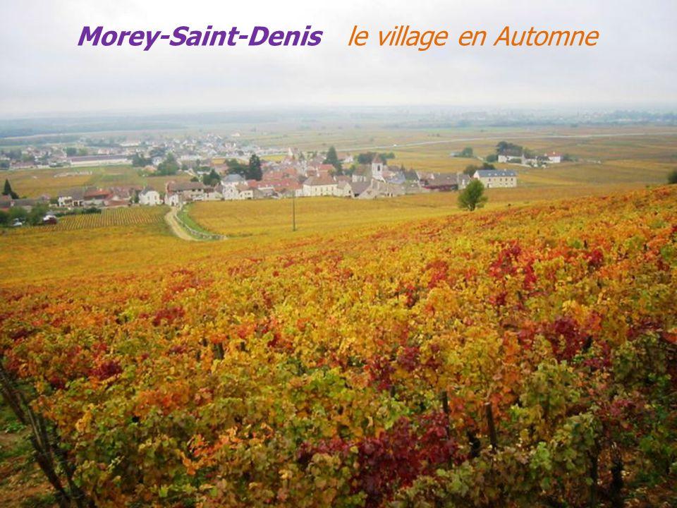 Le château Gevrey – Chambertin Le vignoble Les vignes couleurs dAutomne