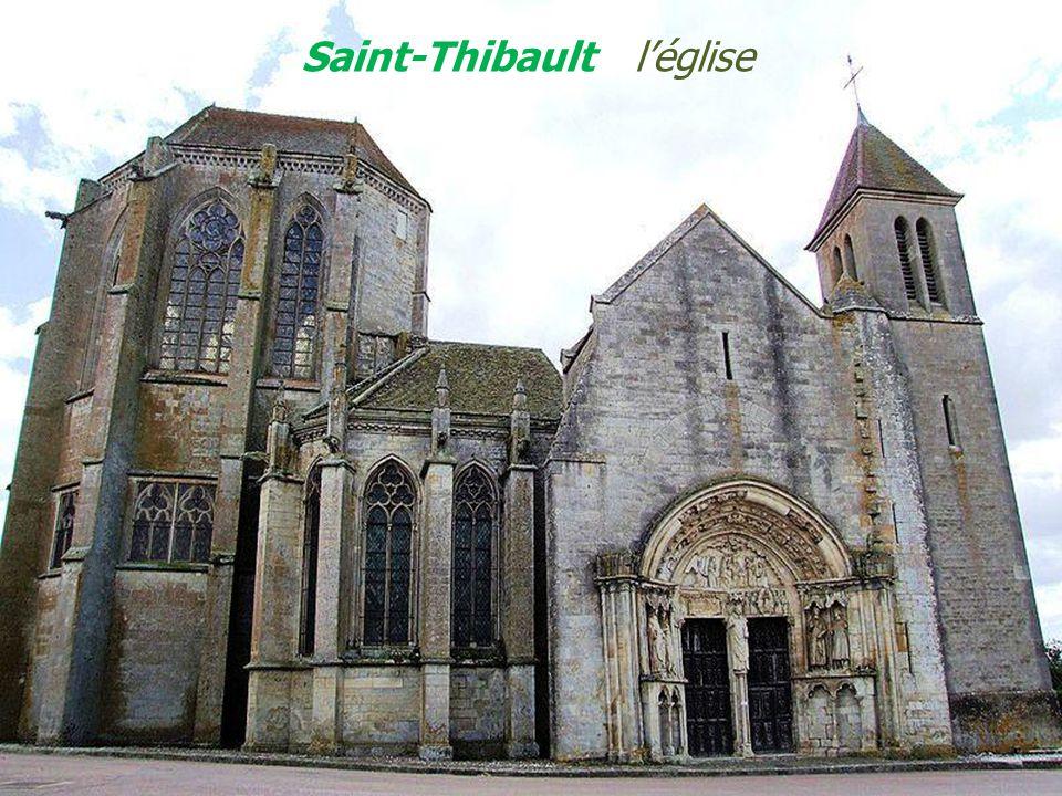 Semur-en-Auxois la vieille ville Forteresse, collégiale Notre-Dame - Le village & lArmançon