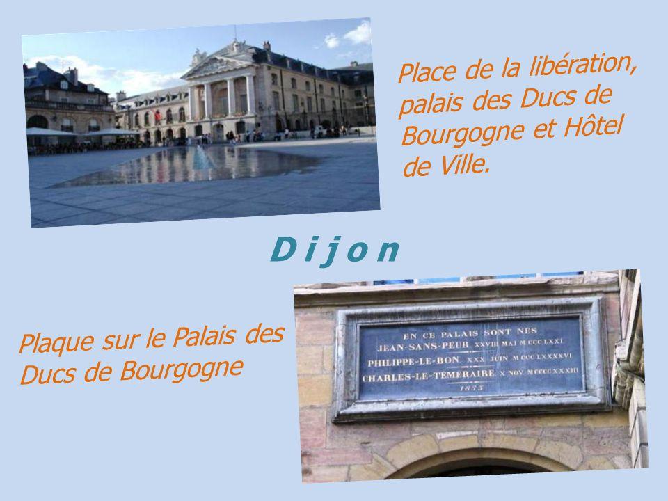 Place de la libération, palais des Ducs de Bourgogne et Hôtel de Ville.