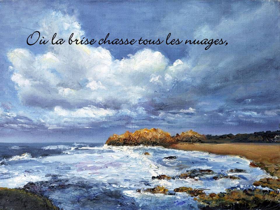 Mon Algérie, vibre sous un ciel dazur,