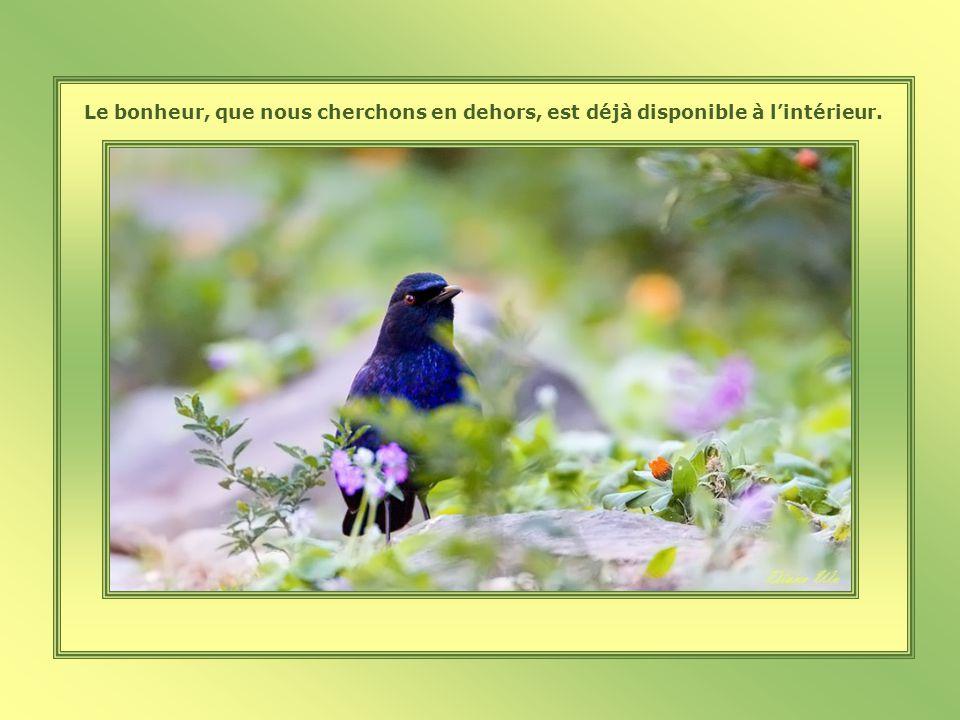 Le secret du bonheur, ce nest pas de faire ce que lon aime, mais dapprendre à aimer ce que lon doit faire.