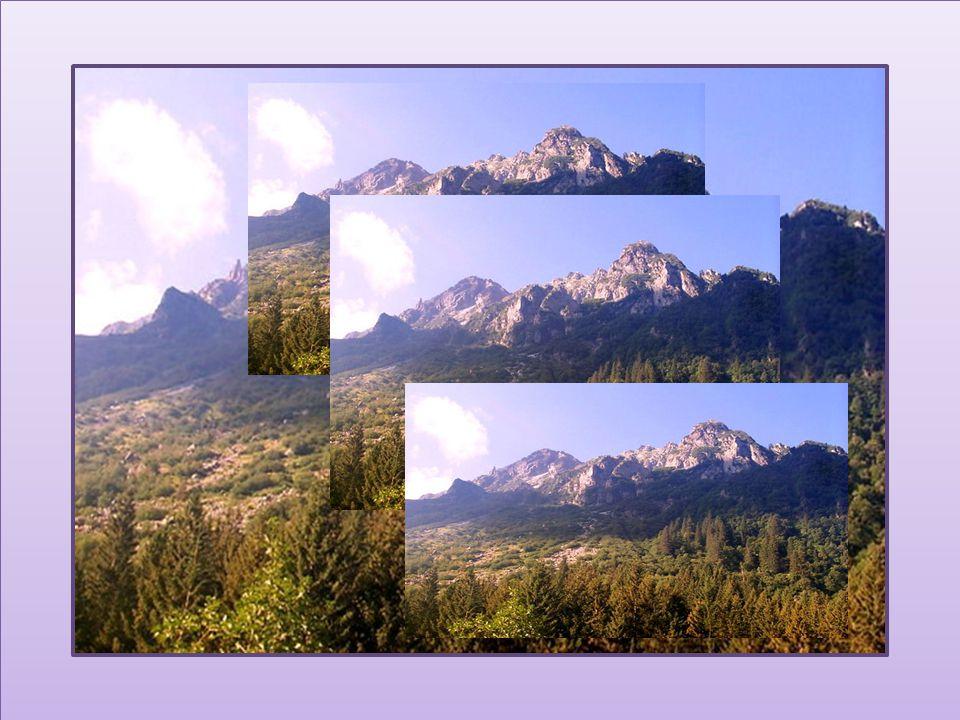Le silence de la montagne est encore plus beau lorsque les oiseaux se sont tus… Taisen Deshimaru