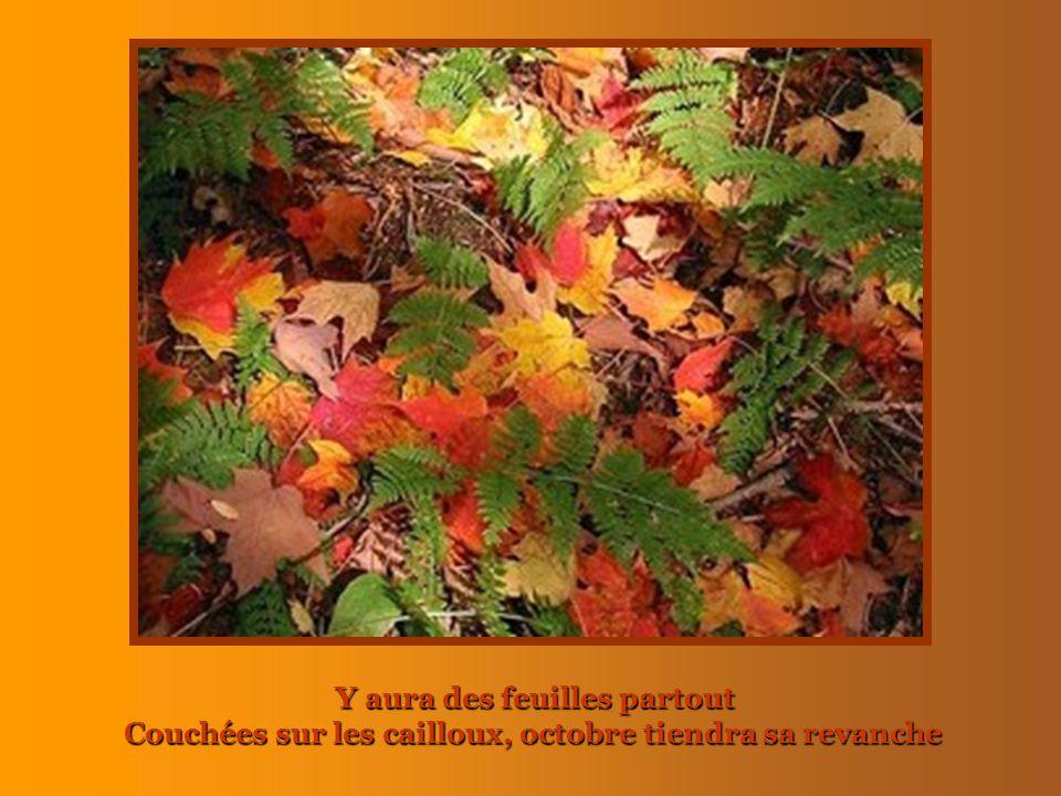 Y aura des feuilles partout Couchées sur les cailloux, octobre tiendra sa revanche