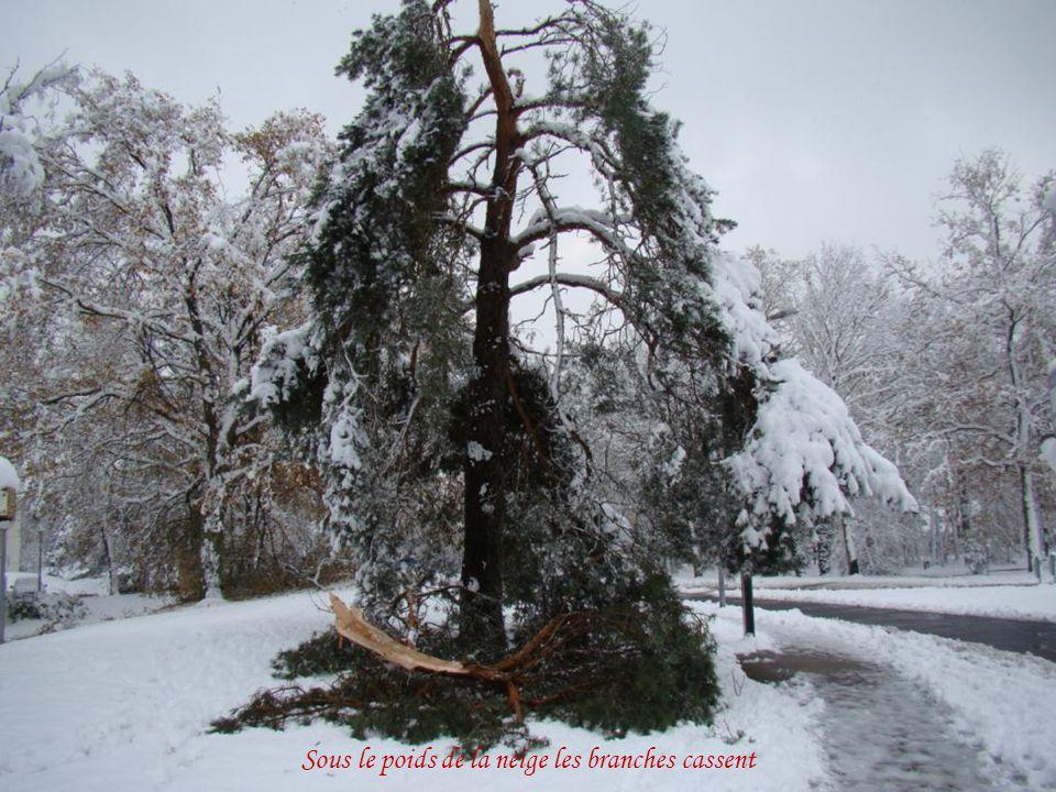 Les toits, les arbres sont couverts de neige