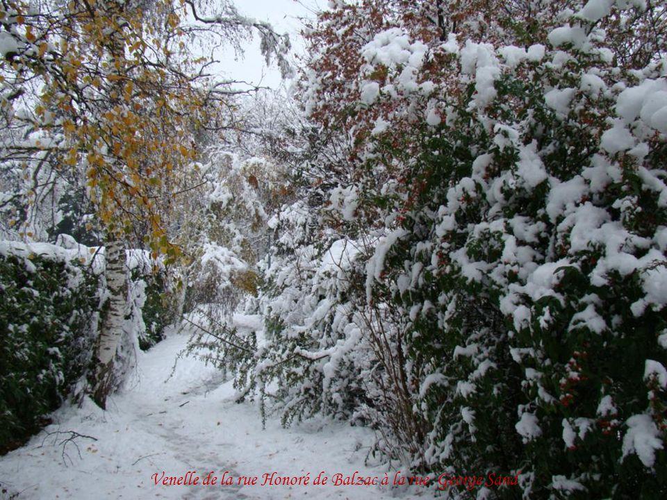 Record de neige en novembre, du jamais vu à cette période depuis 1945