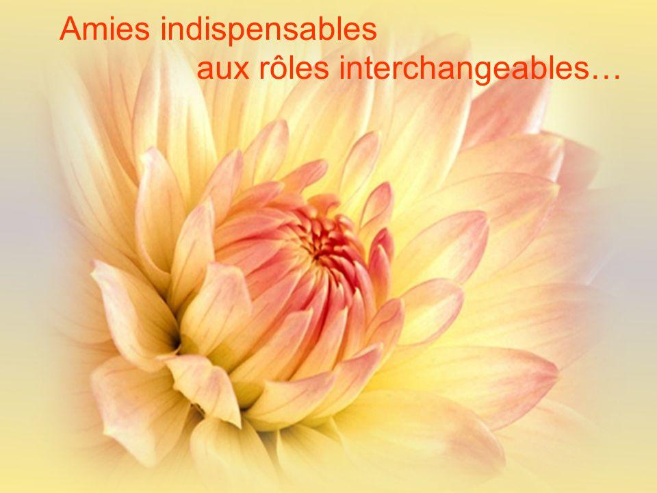Amies indispensables aux rôles interchangeables…
