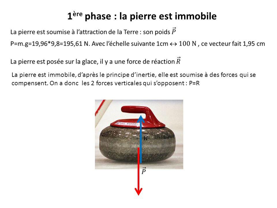 La pierre est immobile, daprès le principe dinertie, elle est soumise à des forces qui se compensent. On a donc les 2 forces verticales qui sopposent