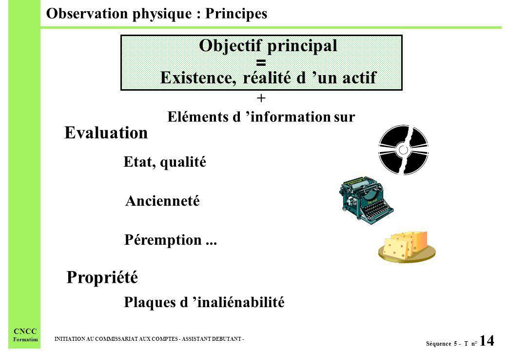 Séquence 5 - T n° 14 INITIATION AU COMMISSARIAT AUX COMPTES - ASSISTANT DEBUTANT - CNCC Formation Observation physique : Principes + Eléments d inform