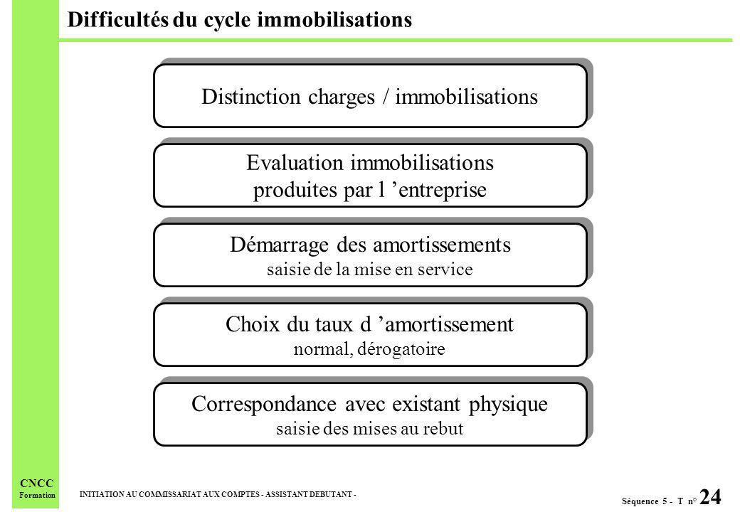 Séquence 5 - T n° 24 INITIATION AU COMMISSARIAT AUX COMPTES - ASSISTANT DEBUTANT - CNCC Formation Difficultés du cycle immobilisations Distinction cha