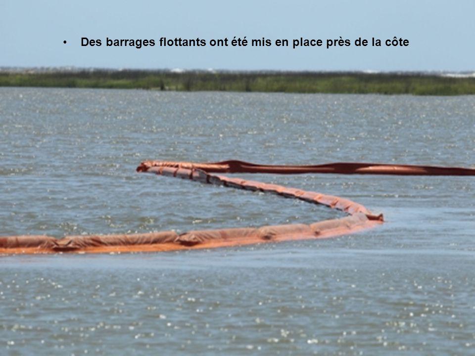 Des barrages flottants ont été mis en place près de la côte
