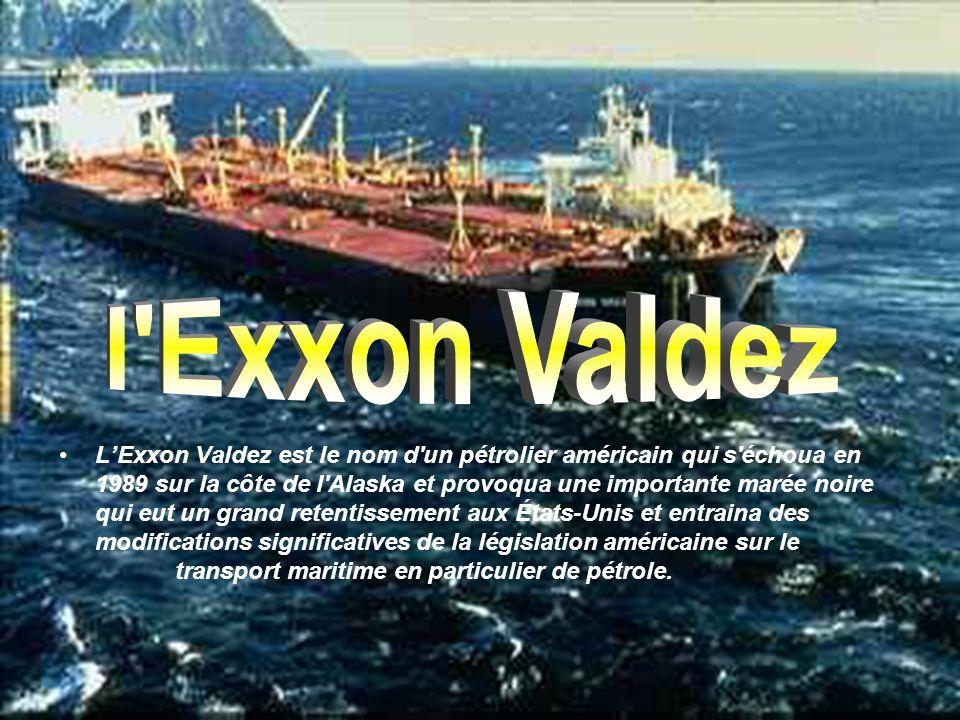 LExxon Valdez est le nom d un pétrolier américain qui s échoua en 1989 sur la côte de l Alaska et provoqua une importante marée noire qui eut un grand retentissement aux États-Unis et entraina des modifications significatives de la législation américaine sur le transport maritime en particulier de pétrole.