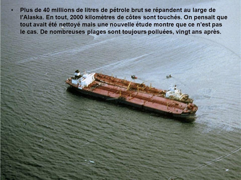 Plus de 40 millions de litres de pétrole brut se répandent au large de l Alaska.