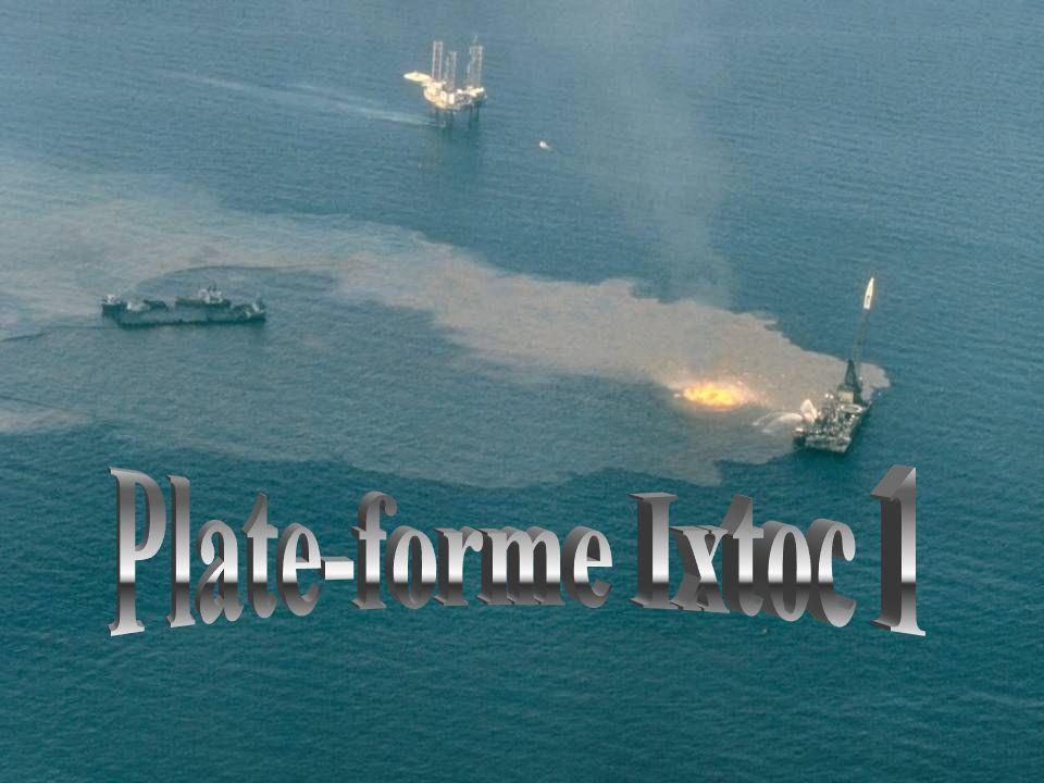Plus de 40 millions de litres de pétrole brut se répandent au large de l'Alaska. En tout, 2000 kilomètres de côtes sont touchés. On pensait que tout a