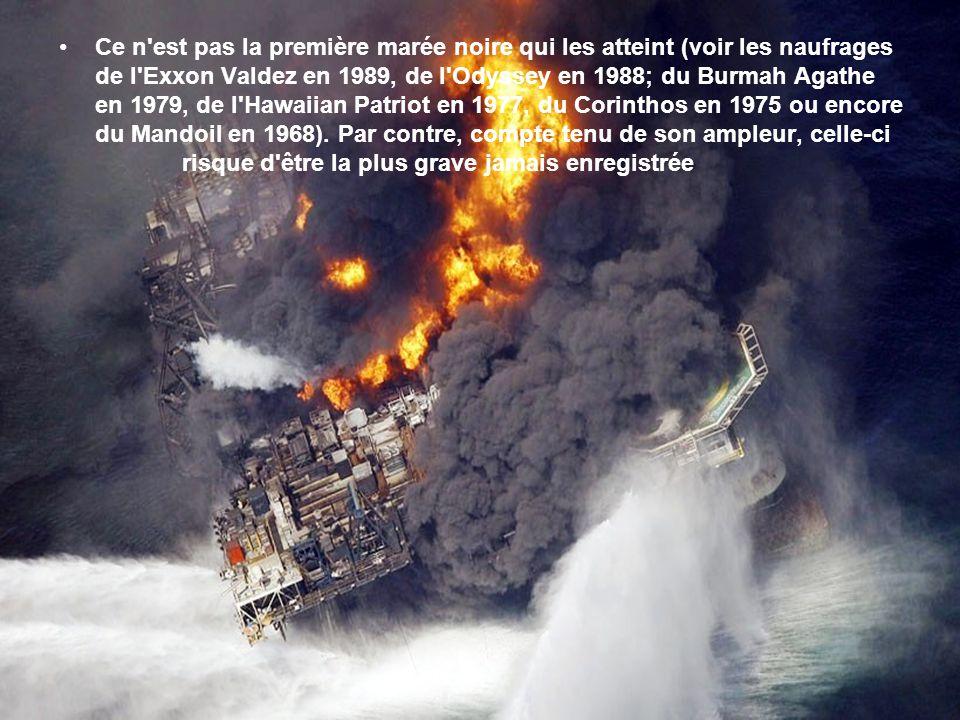 Lexplosion le 20 avril sur une plate-forme pétrolière du golfe du Mexique, a fait 17 blessés et 11 disparus. Des colonnes de flammes s'élèvent du derr