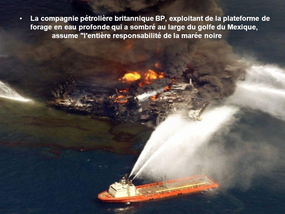 Ce n'est pas la première marée noire qui les atteint (voir les naufrages de l'Exxon Valdez en 1989, de l'Odyssey en 1988; du Burmah Agathe en 1979, de