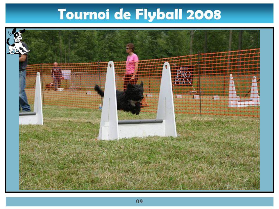 Tournoi de Flyball 2008 08 – Sally sautant une haie.