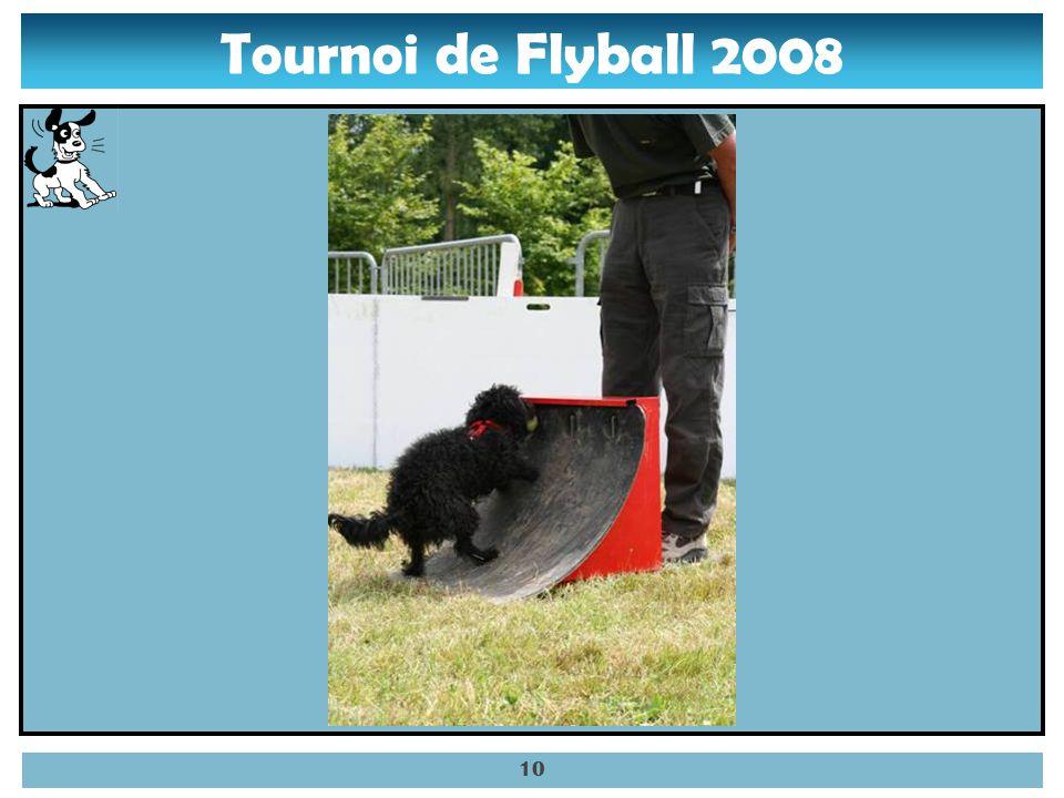 Tournoi de Flyball 2008 09
