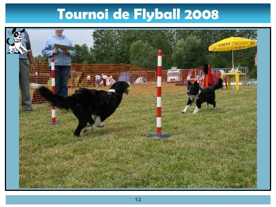 Tournoi de Flyball 2008 11