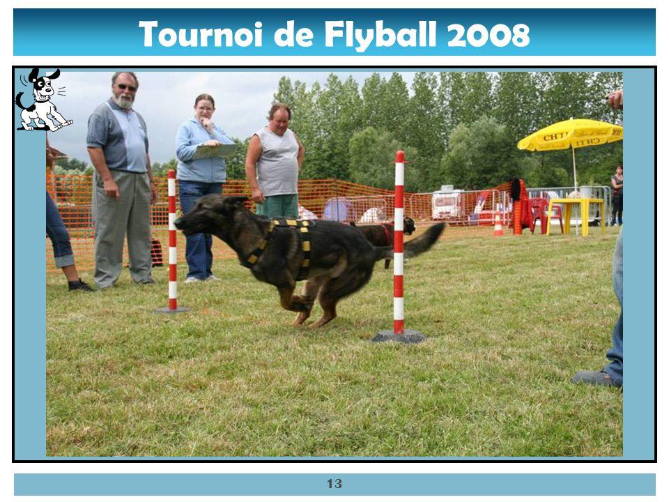 Tournoi de Flyball 2008 12