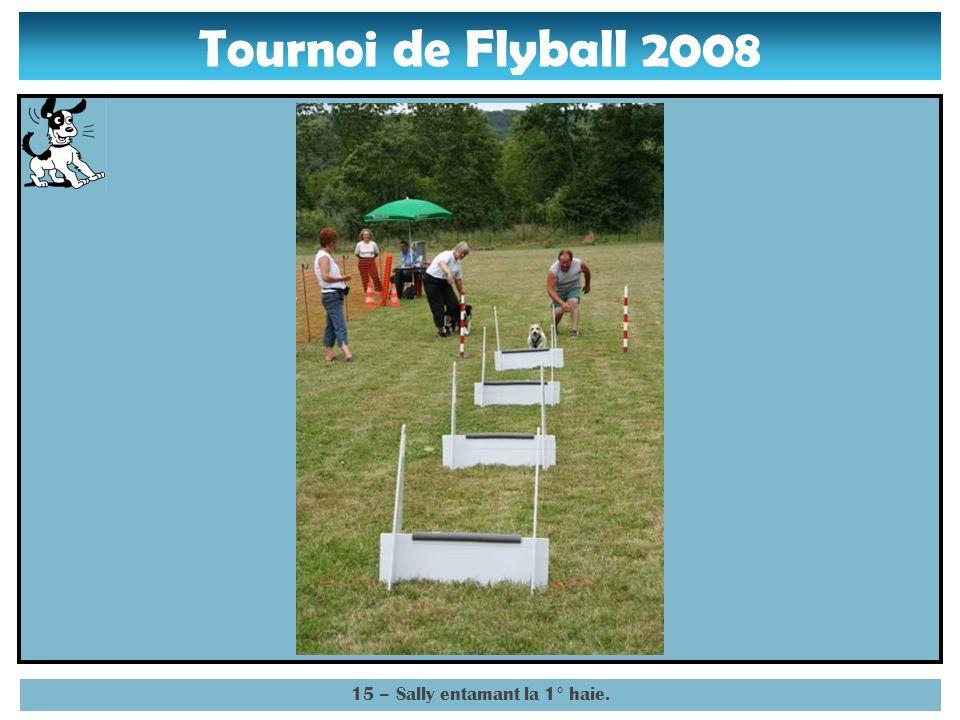 Tournoi de Flyball 2008 14 – Sally lancée sur les obstacles.