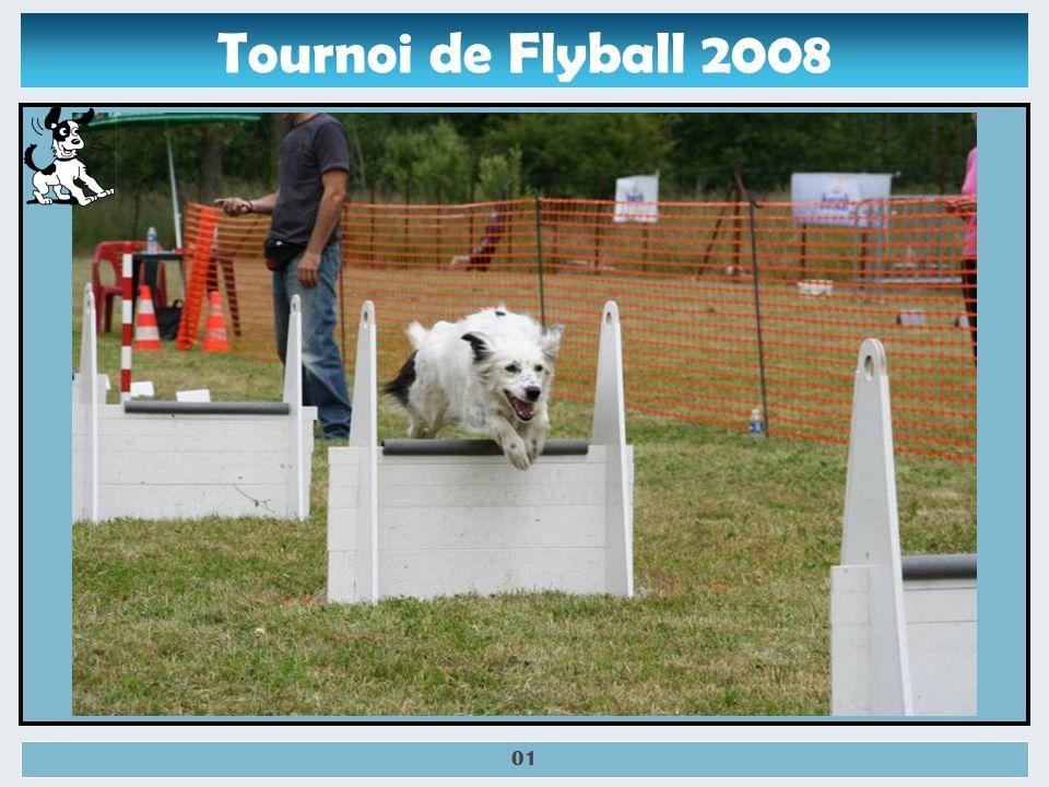 Tournoi de Flyball Bouin-Plumoison 2008