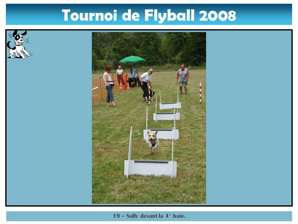 Tournoi de Flyball 2008 18 – Sally sautant la 3° haie.