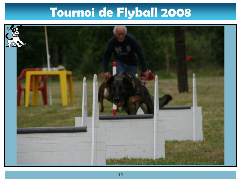 Tournoi de Flyball 2008 30