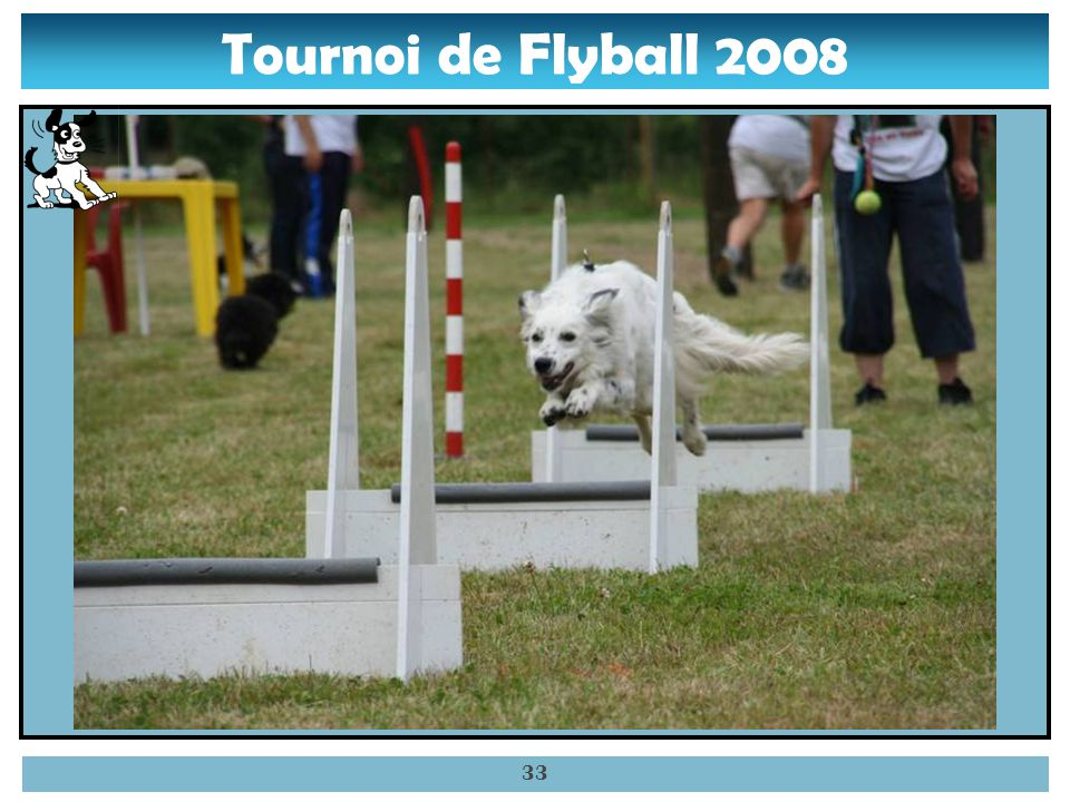 Tournoi de Flyball 2008 32