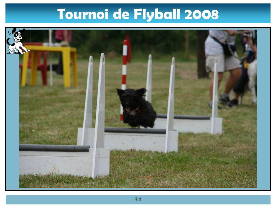 Tournoi de Flyball 2008 33