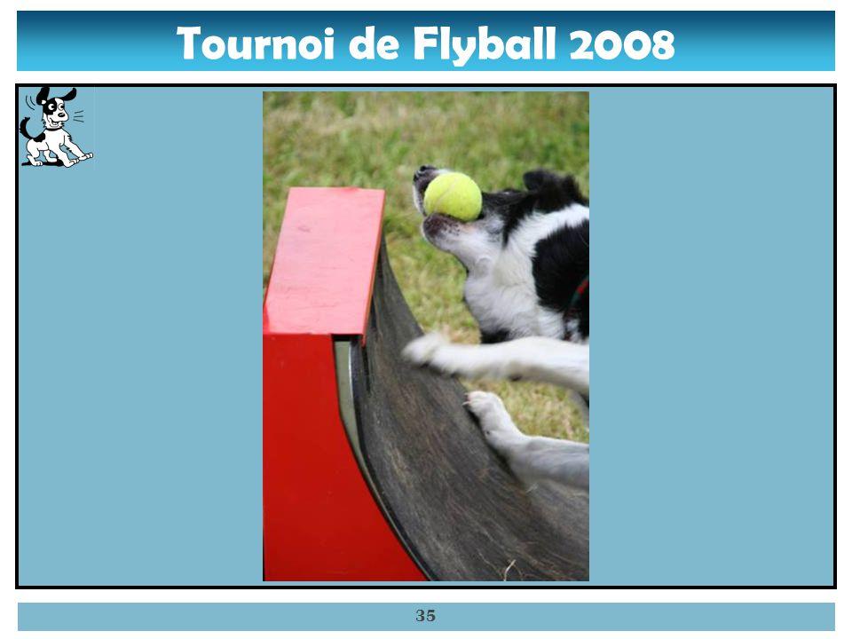 Tournoi de Flyball 2008 34