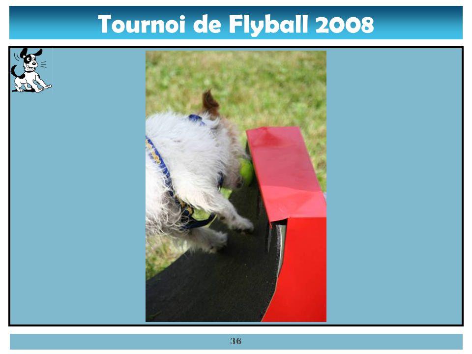 Tournoi de Flyball 2008 35