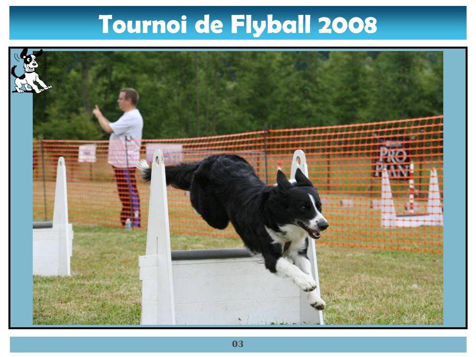Tournoi de Flyball 2008 02