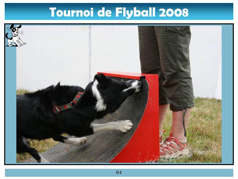 Tournoi de Flyball 2008 03